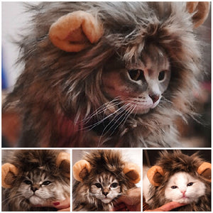 Funny Cute Pet Cat Costume Lion Mane Wig Cap Hat for Cat Dog Halloween Christmas Clothes Fancy Dress with Ears Pet Clothes - Ding's Place
