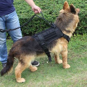 Military Tactical Dog Harness:  German Shepherd Pet Dog Vest With Handle Nylon Bungee Dog Leash Harness For Small Large Dogs Puppy - Ding's Place