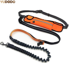 Load image into Gallery viewer, Hand Free Elastic Dog Leash Adjustable Padded Waist Reflective Running Jogging Walking Pet Lead Belt With Pouch Bags - Ding's Place
