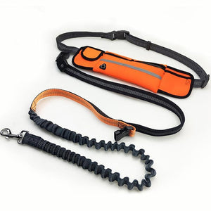 Hand Free Elastic Dog Leash Adjustable Padded Waist Reflective Running Jogging Walking Pet Lead Belt With Pouch Bags - Ding's Place