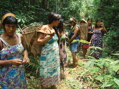 Indigenous women in the forest