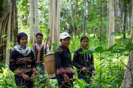 Beautiful Indigenous women in the forest