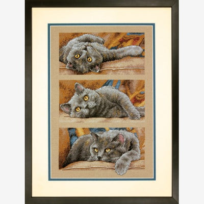 Max the Cat - a Dimensions counted cross stitch kit