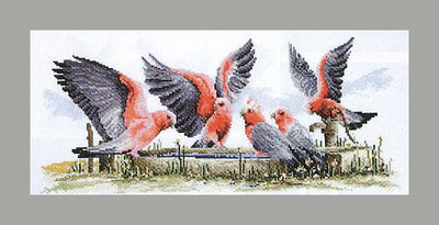 Galahs by the Water Pump - A counted cross stitch kit from Country Threads