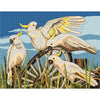 Cartwheel Cockatoos - A Country Threads Cross Stitch Kit