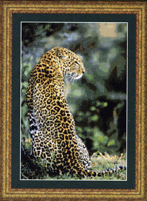 Leopard in Waiting - a Kustom Kraft cross stitch chart