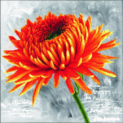 Orange Dahlia - a Needleart no count cross stitch kit with pre-printed background