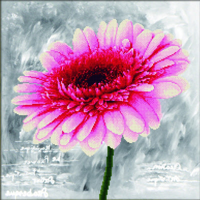 Pink Dahlia - a Needleart no count cross stitch kit with pre-printed background