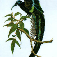 Black Sickle-Billed Bird of Paradise - A Ross Originals cross stitch chart