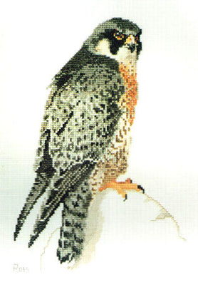 Peregrine Falcon - A Ross Originals cross stitch chart