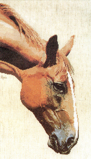 Appaloosa - A Ross Originals cross stitch chart