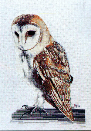 Barn Owl - A Ross Originals cross stitch chart