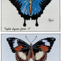Blue Ulysses Butterfly - A Ross Originals cross stitch chart