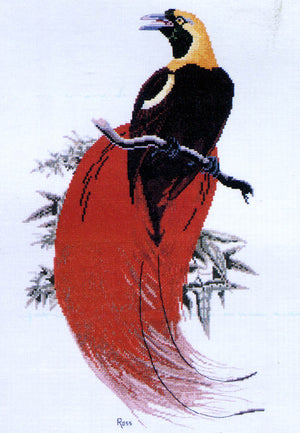 Count Raggi's Bird of Paradise - A Ross Originals cross stitch chart