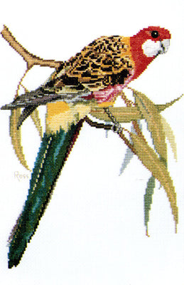 Eastern Rosella - A Ross Originals cross stitch chart