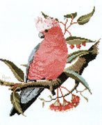 Galah - A Ross Originals cross stitch chart