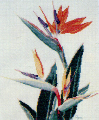 Strelitzia - A Ross Originals cross stitch chart