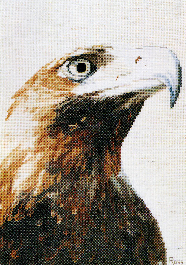 Wedge Tailed Eagle - A Ross Originals cross stitch chart