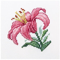 Pink Lily - A RTO cross stitch Kit