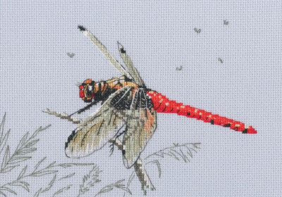 Dragonfly - An RTO cross stitch Kit
