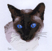 Sam Downloadable cross stitch chart