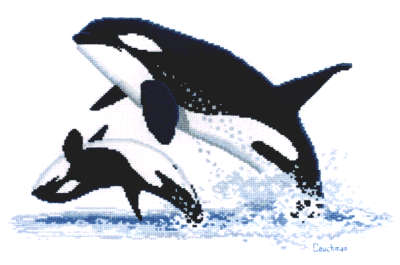 Orcas - A Couchman Creations cross stitch chart