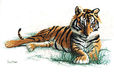 Adolescence - A Couchman Creations Tiger cross stitch chart