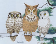 3 Wise Owls - A Couchman Creations cross stitch chart