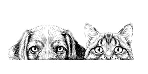 Cat and Dogs Sticker