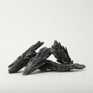 Black Kyanite - Rough 1pc