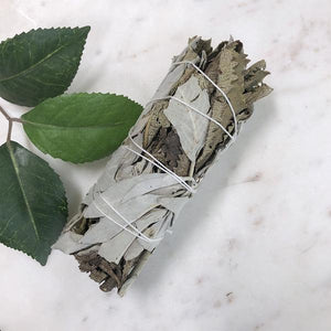White Sage & Yerba Santa Smudge - Medium