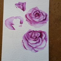 "Rose Cards- Preprinted ""Color a Card"" Panels"