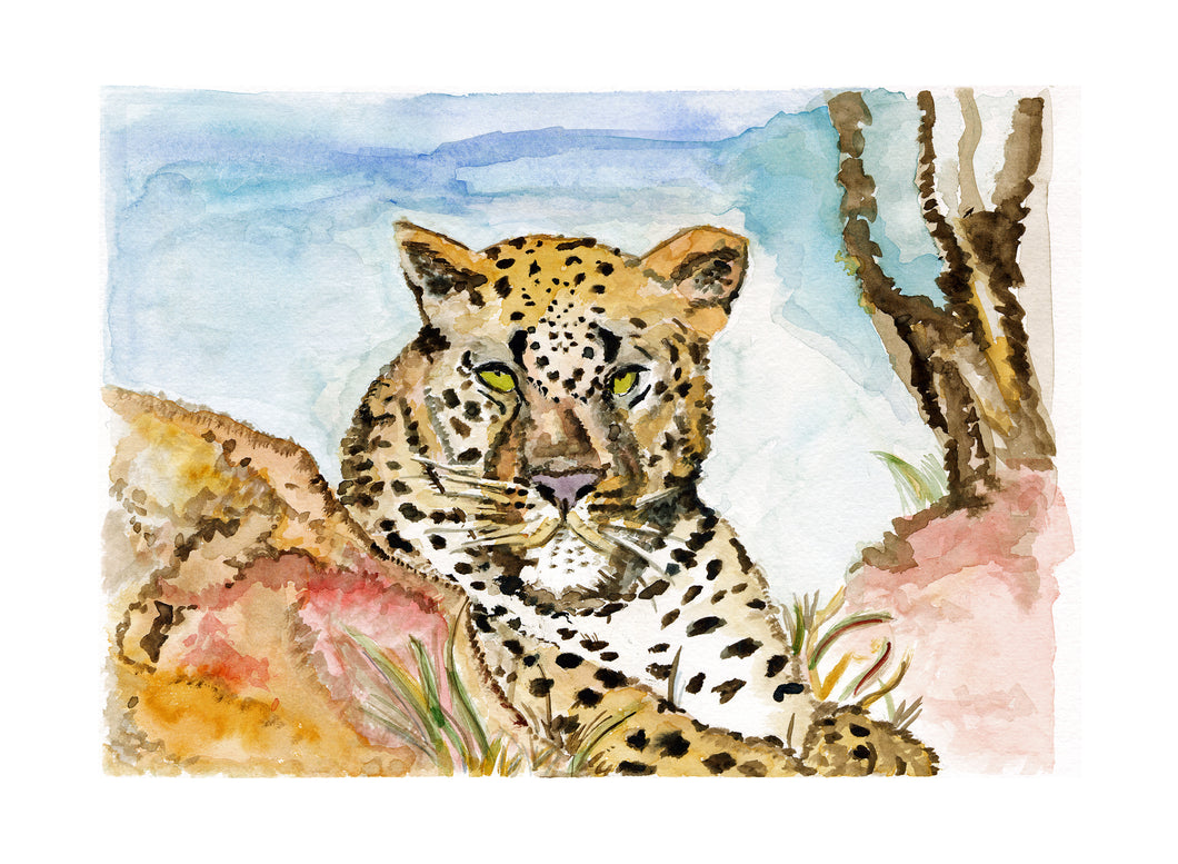 Lex of Londolozi, Giclee Print of Original Watercolor  (2/100)