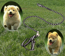 Load image into Gallery viewer, Pet Lead Safety Chain Chest Strap Collar Dog Walk Leash Night Reflection Rope