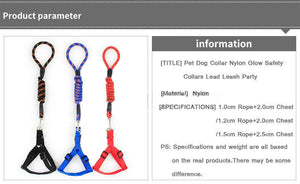 Pet Dog Collar Nylon Glow Safety Collars Lead Leash Party S M L Training Halter
