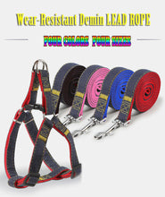 Load image into Gallery viewer, Pet Dog Collar Glow Safety Collars Lead Leash Party Training Halter Wear Resist