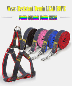 Pet Dog Collar Glow Safety Collars Lead Leash Party Training Halter Wear Resist
