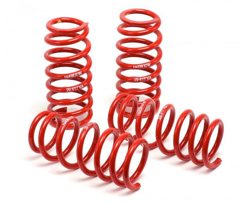 H&R 04-06 BMW 525i/530i/545i E60 Race Spring (w/o Self Leveling) - 50460-88