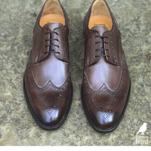 Wholecut shoes - Ashbourne Derby Wingtip Brogue - Brown