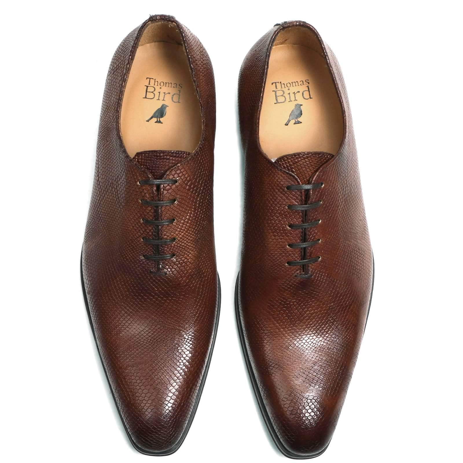 Wholecut shoes - Benson Wholecut Oxford - Brown Snakeskin