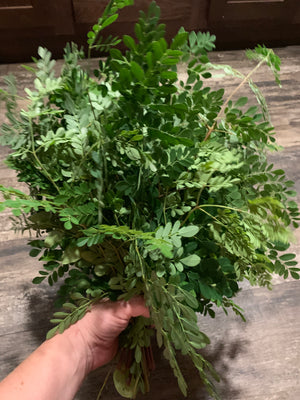 Cooking with Fresh Moringa Leaves