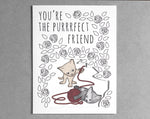 cat friend everyday card