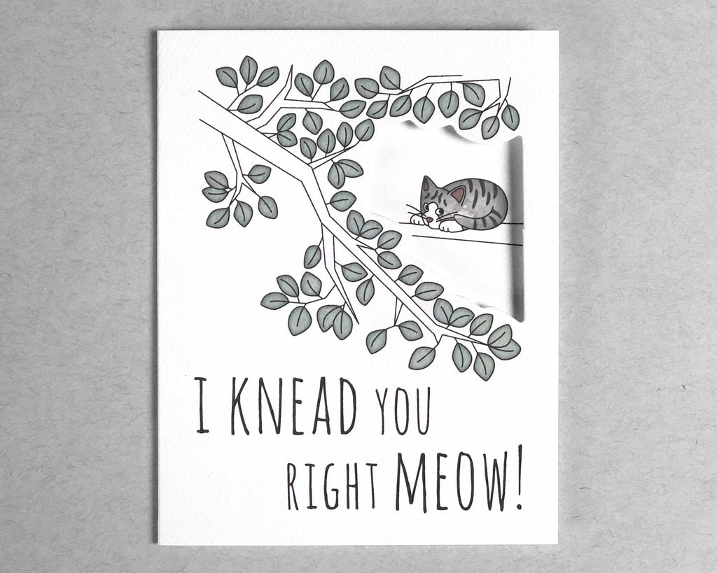 cat knead love card