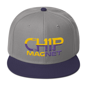 Purple/Gold Snapback