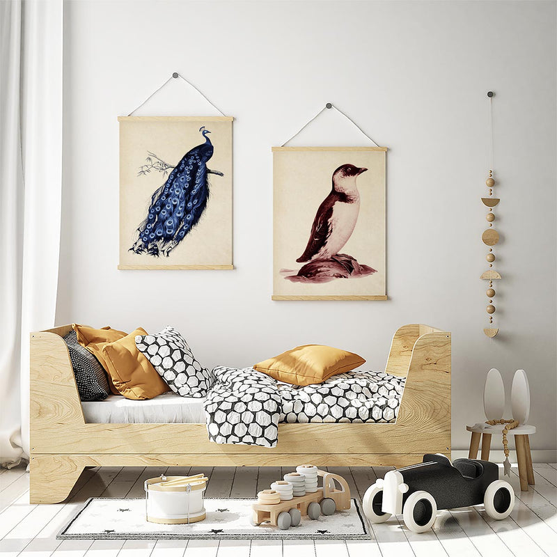 Peacock and Penguin Animal Poster Set of 2 Prints