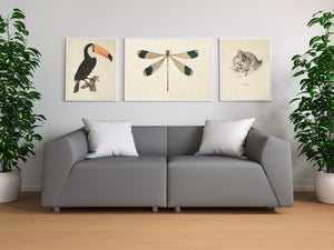 Vintage Animals Illustrations Set of 3 Prints