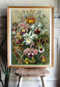 Lilly Flowers by Ernst Haeckel (Orchidaceae) - Kuriosis Vintage Prints