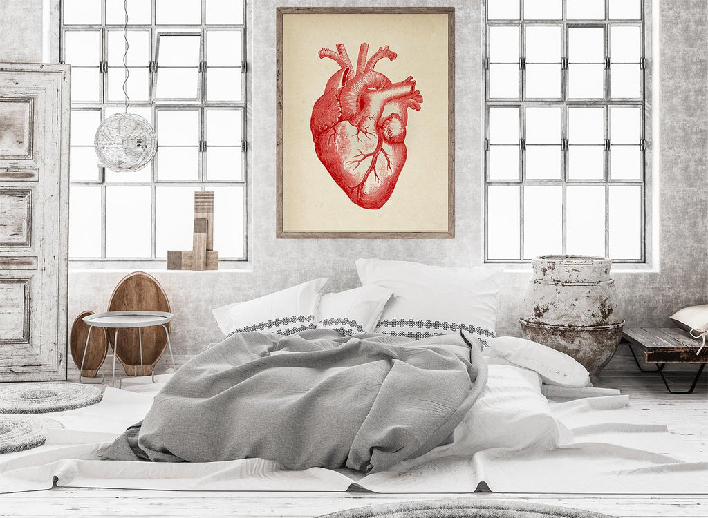 Anatomical Heart Vintage Poster in your Bedroom Decor