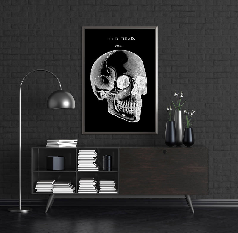 Black Skull Anatomy Art Poster