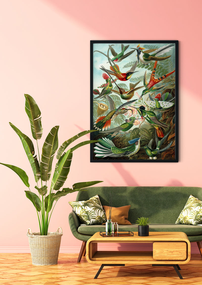 Birds of Paradise by Ernst Haeckel Art Poster